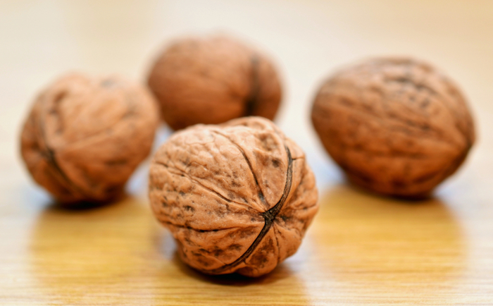 California Walnuts: How to Start and Finance Your Own Walnut Business